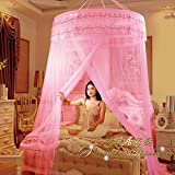 Dome ceiling princess bed canopy, Palace Enlarge Double Oversized mosquito net mosquito-curtain for twin Queen and king size -B Full-size