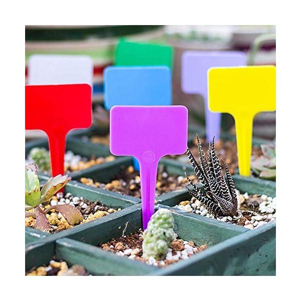 shuxuanltd Etichette Impianto di Plastica Ecologico Etichette Vegetali per Piante da Esterno Etichette Vegetali per Semi… 5 spesavip