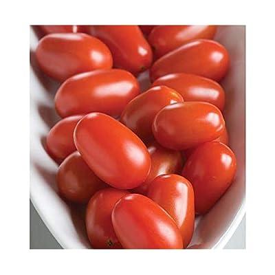 David's Garden Seeds Tomato Grape Five Star (Red) 25 Non-GMO, Hybrid Seeds : Garden & Outdoor