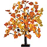 Collections Etc Lighted Tabletop Fall Maple Tree