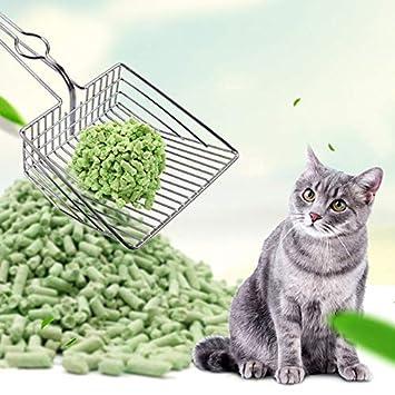 Fishyu - Pala para Arena de Gato, para Mascotas y Gatos, de ...