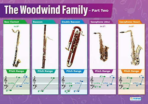 "Instrument Family Posters - Woodwind Instruments (2) | Classroom Posters for Music | Gloss Paper measuring 33"" x 23.5"" 