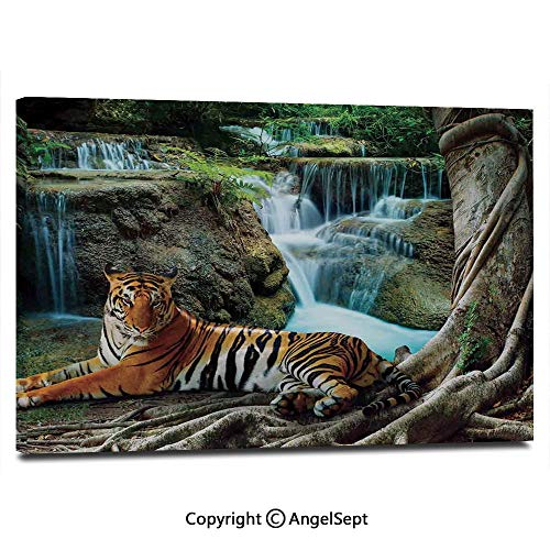Modern Gallery Wrapped Indochina Tiger Lying with Relaxing Under Banyan Tree Against Limestone Waterfalls Picture Pictures on Canvas Wall Art Ready to Hang for Living Room Kitchen Home Decor,12