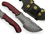 AishaTech El Draque Hand Made Damascus Steel Blade Tracker Knife Red Jute Micarta Handle Review