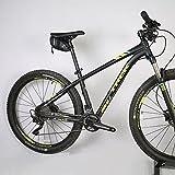 WOTOW Rainproof Bicycle Saddle Bag, Waxed Under