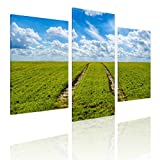 Alonline Art - Green Grass Farming Split 3 Panels Framed Stretched Canvas (100% Cotton) Gallery Wrapped - Ready to Hang | 48''x32'' - 122x81cm | 3 Panels Combination Frame for Living Room Framed Art