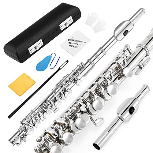 (Eastar EPC-1 Nickel Plated Piccolo Key of C With Hard Case Fingering Chart, Cleaning Rod, Cloth, Swab and Gloves)