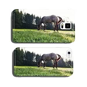 Horse in the green mountain pasture cell phone cover case iPhone5