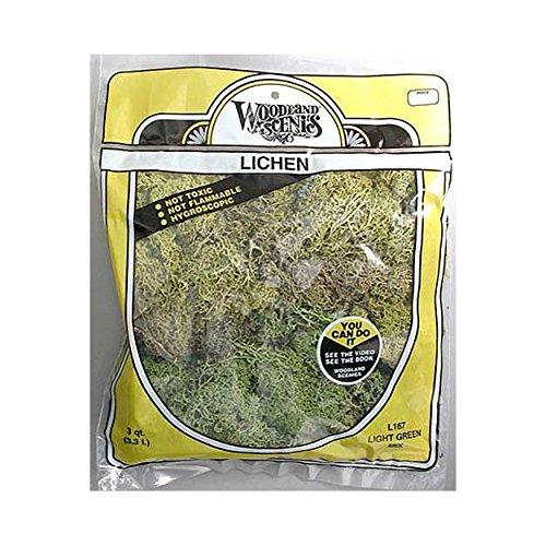 Lichen Bag, Light Green Mix/165 cu. in.