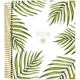 "bloom daily planners 2018 Calendar Year Hard Cover Vision Planner - Monthly and Weekly Column View Agenda Organizer - January 2018 - December 2018 - (7.5"" x 9"") - Palm Leaves"