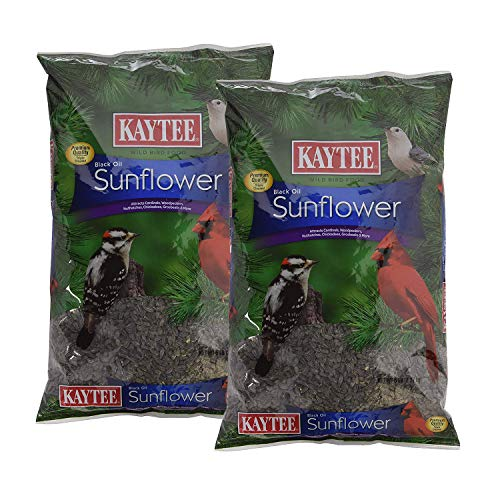 Kaytee Wild Bird Food Black Oil Sunflower - 5 Lb (Pack of 2)