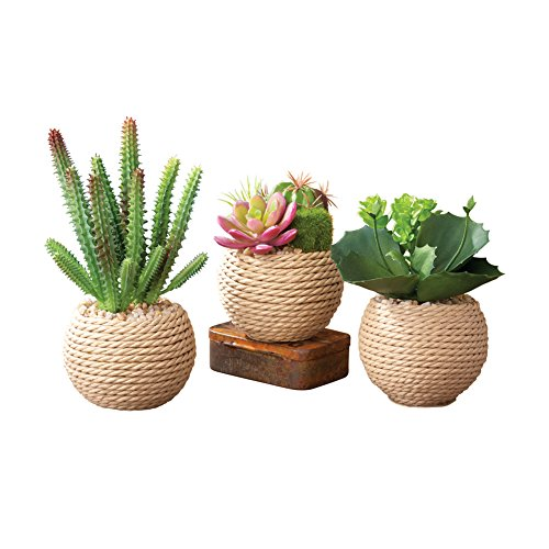 Green Vase Set - Collections Etc Potted Succulents Faux Artificial in Rope Vase 3 Piece Set, Green