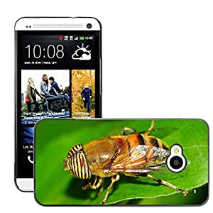 GoGoMobile Slim Protector Hard Shell Cover Case // M00118204 Insects Diptera Eristalinus // HTC One M7