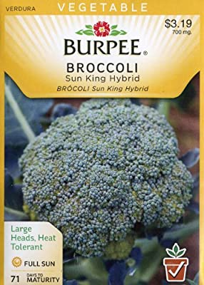 Burpee 67041 Broccoli Sun King Hybrid Seed Packet