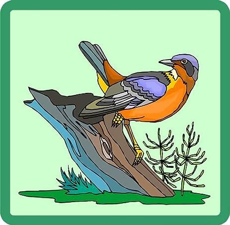 Amazoncom Oriole Bird Perched On A Tree Trunk Etched Vinyl - Bird window stickers amazon