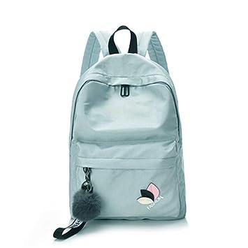Amazon.com | Women Waterproof Nylon Backpacks Female ...