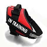 Fairwin Service In Training Dog Vest Harness, Dog Reflective Vest with IN TRAINING Patches for Large Medium Small Dogs
