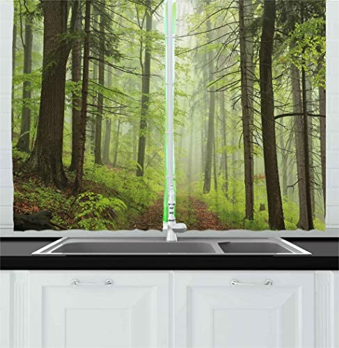 Ambesonne Outdoor Kitchen Curtains, Trail Trough Foggy Alders Beeches Oaks Coniferous Grove Hiking Theme, Window Drapes 2 Panel Set for Kitchen Cafe Decor, 55 X 39 , Pale Green Pale Yellow