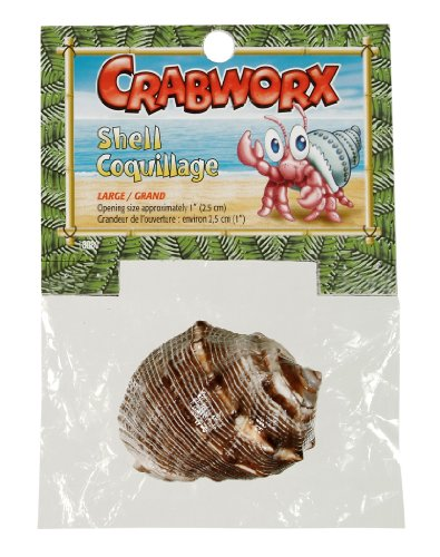 Crabworx Shell, Large (Large Hermit Crab Shells)