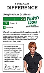 Vital Planet - Flora Dog Chewables - High Potency Multi-Strain Probiotic Formula for Dogs - 30 Chewable Tablets