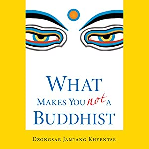 What Makes You Not a Buddhist Hörbuch