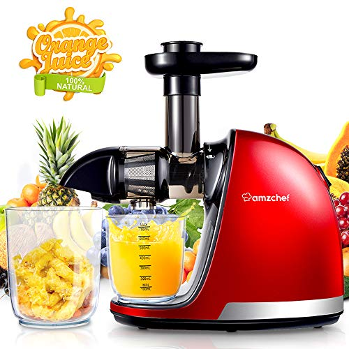 AMZCHEF Juicer, Slow Masticating Juicer Extractor Professional Machine with Quiet Motor/Reverse Function/Easy to Clean with Brush for Fruit & Vegetable Juice (Best Rated Masticating Juicers)