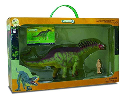 CollectA Amargasaurus Toy in Window Box