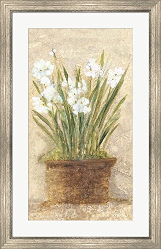 Cheris Garden (Garden White Narcissus Panel by Cheri Blum Framed Art Print Wall Picture, Silver Scoop Frame, 23 x 36 inches)