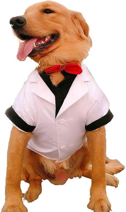 WHZWH Camisa de Boda de Perro pequeño, Esmoquin Formal de Cachorro ...