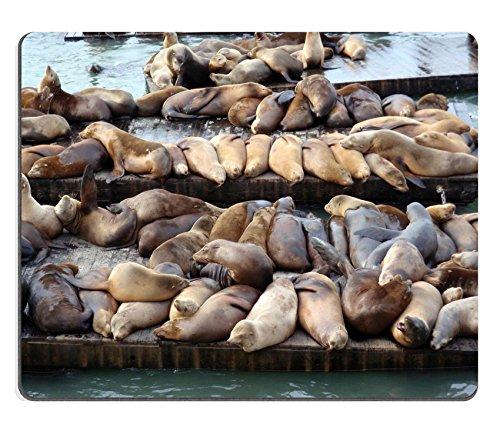Liili Mouse Pad Natural Rubber Mousepad IMAGE ID: 17096492 Large group of Sea Lions rest on rows of Piers near Pier 39 in San Francisco - 39 Pier California Francisco In San