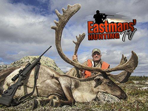 (Hunting Quebec Caribou)