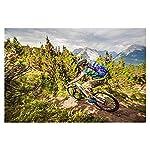 26-Pollici-21-velocit-Adulto-Bicicletta-MTB-Bicicletta-Mountain-Bike-Bicicletta-Biciclette-Doppio-Freno-A-Disco-Acciaio-Alto-Tenore-Carbonio-TelaioBlack-Gray