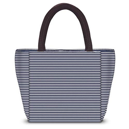 (Insulated Lunch Bag Lunch Box for Women/Men/Girls/boys Tote Bag Lunch Container by SKYNEW,Blue-White Stripes)
