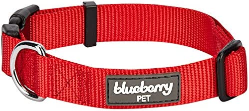 Blueberry Pet Colors Classic Collars product image