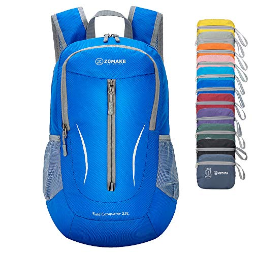 d6989808958f Daypack Backpack - Trainers4Me