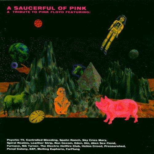 A Saucerful Of Pink : Various Artists: Amazon.es: Música
