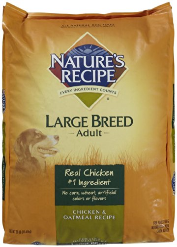 Nature's Recipe Large Breed  & Oatmeal - 30lb