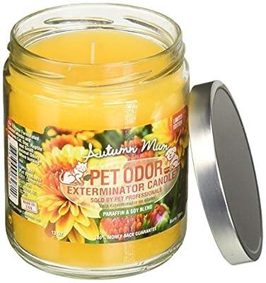 Specialty Pet Products Pet Odor Exterminator Jar Candles