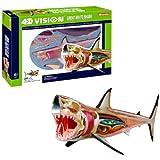 John N. Hansen Tedco 4D Vision Great White Shark Anatomy Model