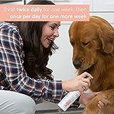 Veterinary Formula Clinical Care – Premium Itch