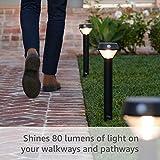 Ring Solar Pathlight -- Outdoor Motion-Sensor