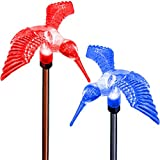 SolarDuke Hummingbird Solar Color Changing Holiday Pathway Lighting Garden Stake Lights For Christmas Thanksgiving Outdoor Decoration Yard Patio Lawn Decor by (2 Pack)