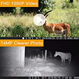 "�New Version】TOGUARD Trail Camera 14MP 1080P Wildlife Scouting Hunting Camera Motion Activated Night Vision Game Cam with 2.4"" LCD Display IP56 Waterproof Design for Wildlife Hunting and Home Security"