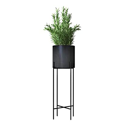 Amazoncom Joannas 2 In 1 Plant Stand Set Home Tall Indoor Plant