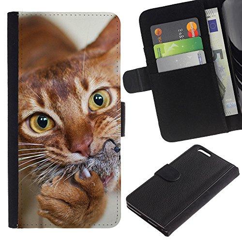 EuroCase - Apple Iphone 6 PLUS 5.5 - orange American shorthair chausie cat - Cuero PU Delgado caso cubierta Shell Armor Funda Case Cover