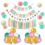Litaus Girls Birthday Decorations, Pom Poms Flowers Kit, Hanging Birthday Banner, Paper Garland, Tassels and Balloons for 1st Birthday Girl Decorations Kids Birthday