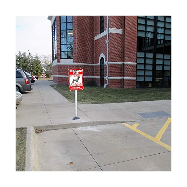 "English Cocker Spaniel Lovers Parking Only Violators Get No Play Time Novelty Tin Sign Indoor and Outdoor use 8""x12"" or 12""x18"" 4"