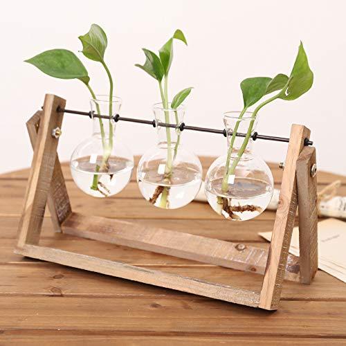 Skyeye Decoraciones de la Sala de Estar Decoración de la Botella de Vidrio Hidropónico Florero de Agua Verde: Amazon.es: Hogar