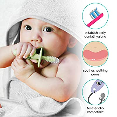 ZoLi Chubby Gummy teether | 2 Pack Baby Teething Relief - Blush/Grey, BPA Free Teething Stick - Baby Shower Gift : Baby