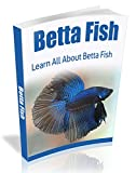 Betta Fish: Learn All About The Amazing Betta Fish